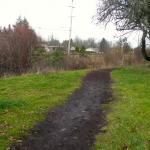 NW view across creek